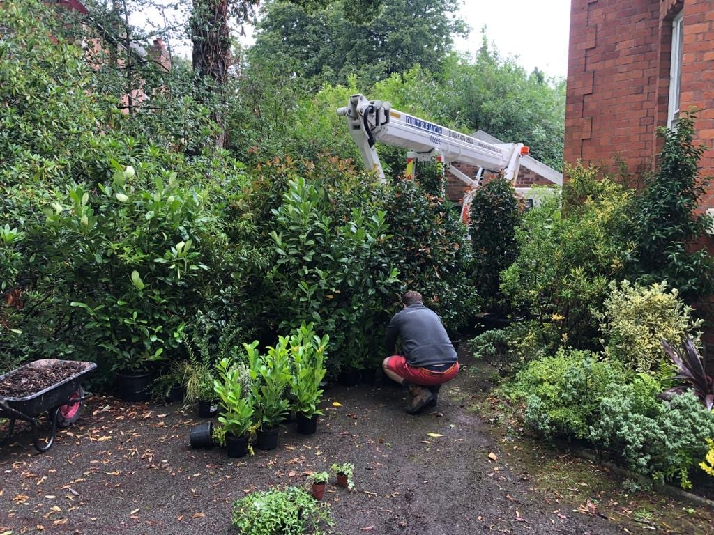 Landscape construction, set dressing, greenery and props Manchester